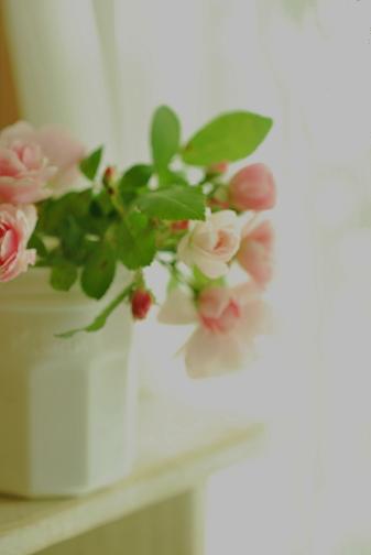 052_20111229185848.jpg