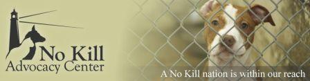 No Kill Advocacy