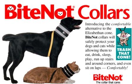 Bitenot collars