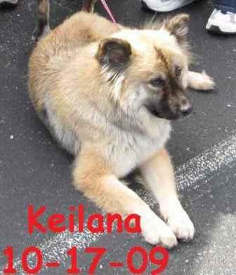 Keilana1.jpg