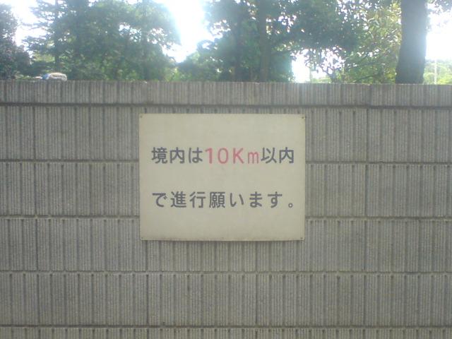10km???