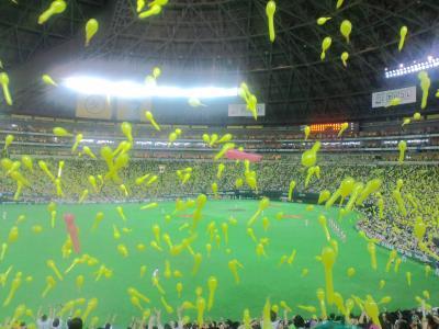 110611福岡ヤフードーム3