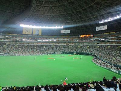 110612福岡ヤフードーム1
