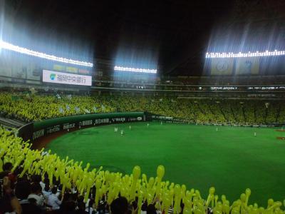 110612福岡ヤフードーム2