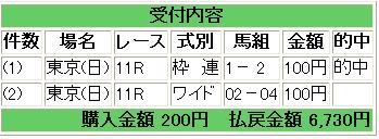 2009天皇賞(秋)
