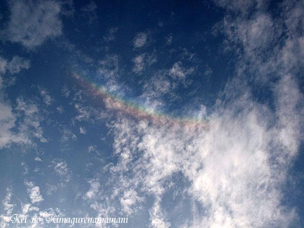 早朝の虹♪