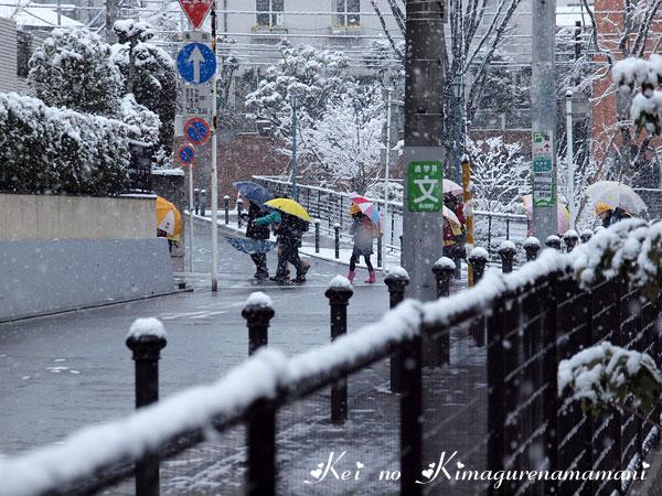 雪の朝の集団登校♪