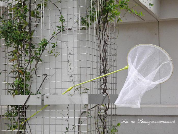 虫取り網♪