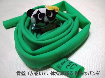 a骨盤体操ゴムと毛糸のパンダ