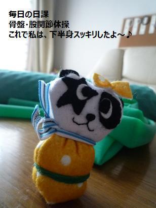 骨盤体操1毛糸のパンダ
