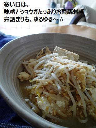 izumiさん しょうがたっぷり味噌豆腐 鼻水