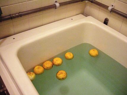 ゆず風呂1