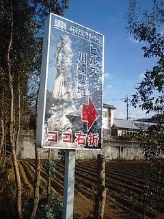 MA330081-3.jpg