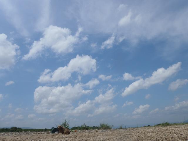 201106216.jpg