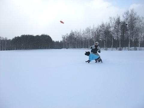 huyuyasumi2-12.jpg