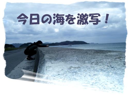 今日の海を激写!