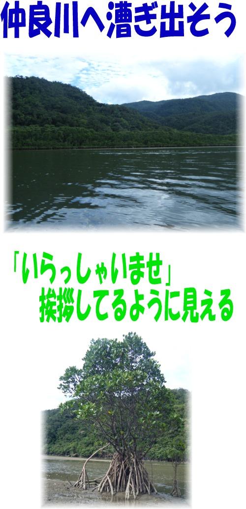仲良川へ漕ぎ出そう