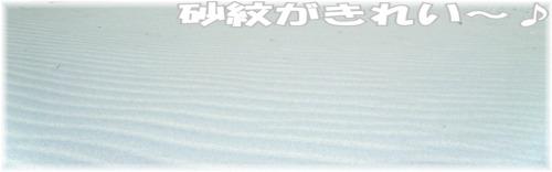 砂紋がきれい