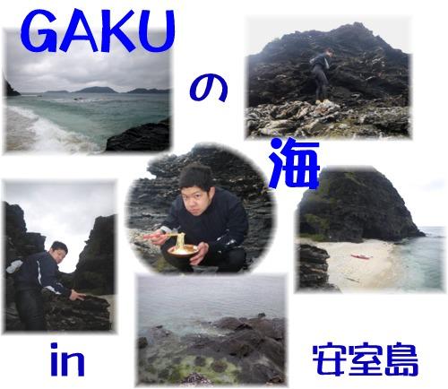 GAKUの海