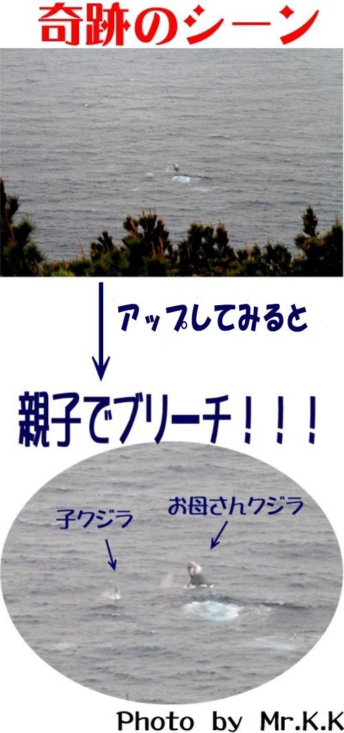 奇跡のシーン.mix500.mixOK