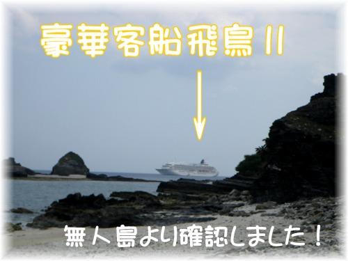 豪華客船飛鳥Ⅱ