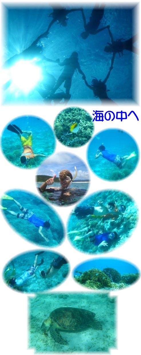 ③海の中へ