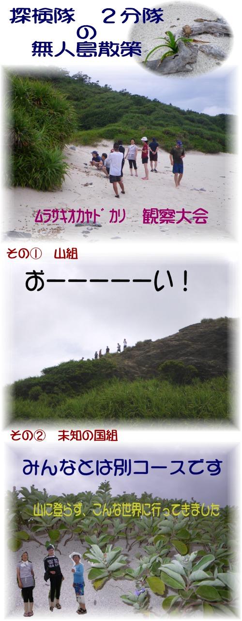 ②無人島散策