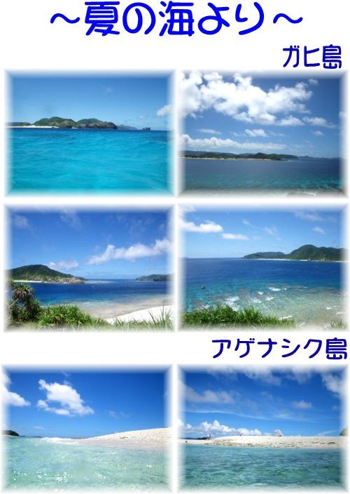 ?夏の海より