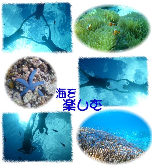 ②海を楽しむ