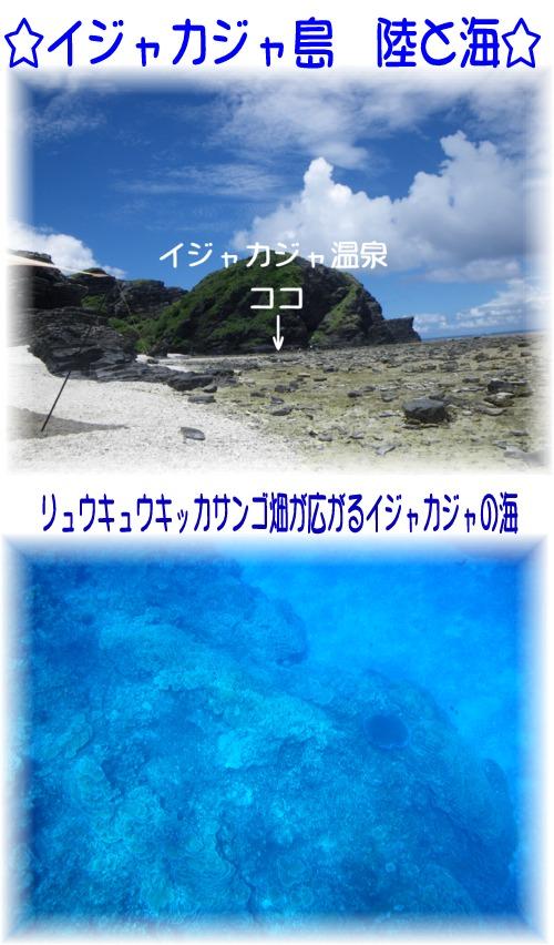 ④イジャカジャ 陸と海