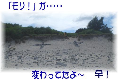 ⑤「モリ!」が