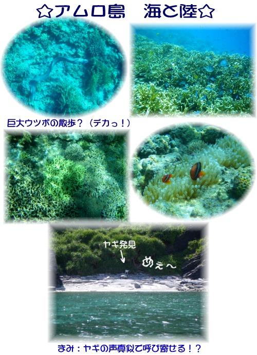 ③アムロ島 海と陸