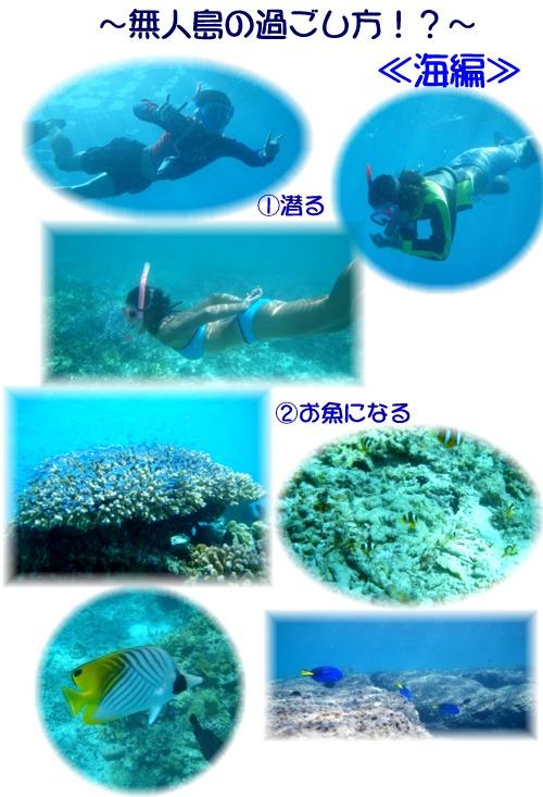 ④無人島の過ごし方 海編