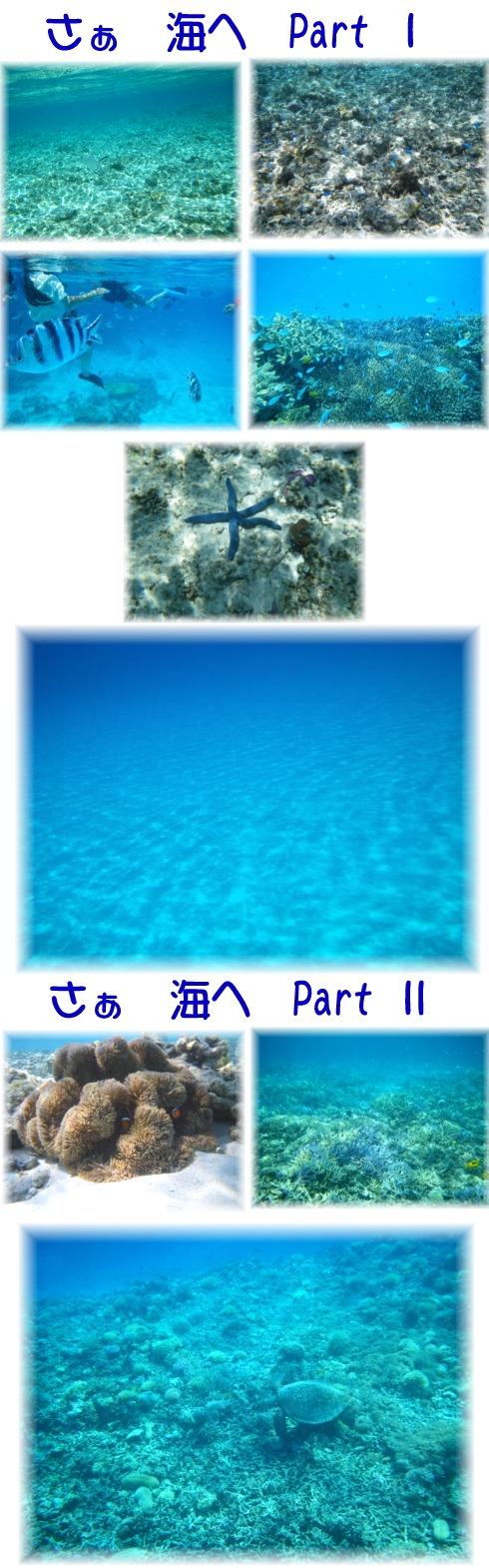 ③さぁ 海へ