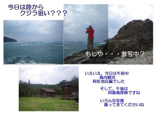 島内観光編