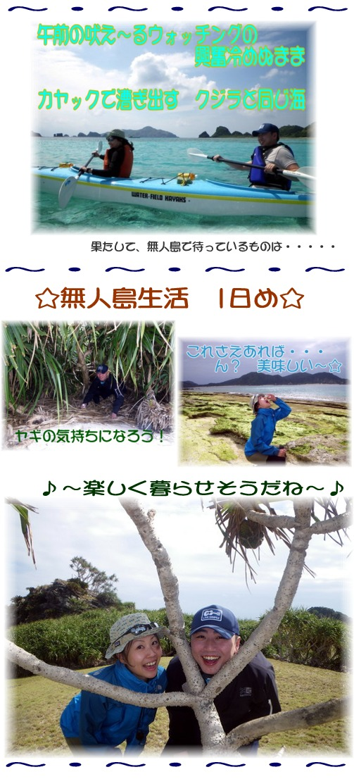 無人島生活?