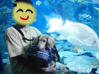 snap_kiki321_2009106191223.jpg