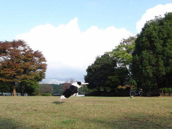20111120-11