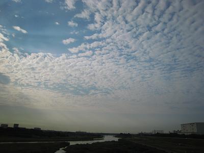 20090926_003.jpg