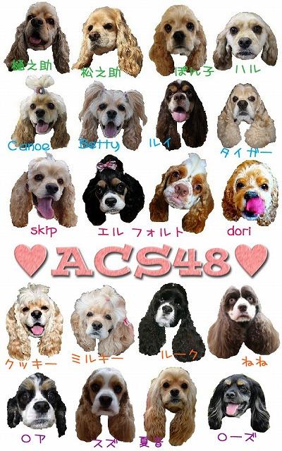 ACS1_20111206231846.jpg