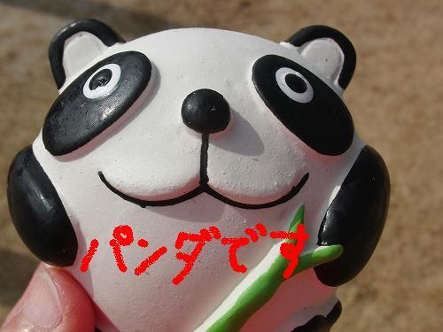 CIMG0389_20120224205519.jpg
