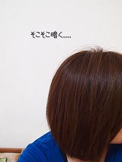 conv0072_20091224150859.jpg