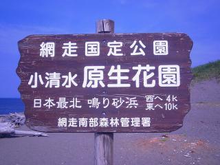 P7012569-s.jpg