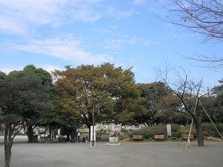 chihaya091022
