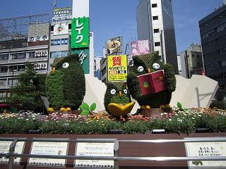 fukurou110609