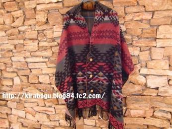 CIMG4198_20100829123856.jpg