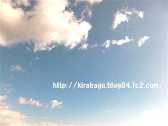 CIMG7681.jpg