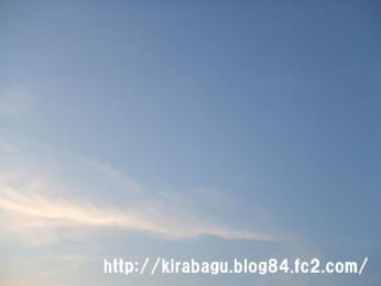 bhg_20101119180811.jpg