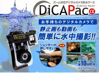 dicapacdigitalcamer1.jpg