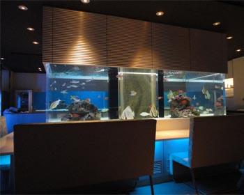 品川水族館1